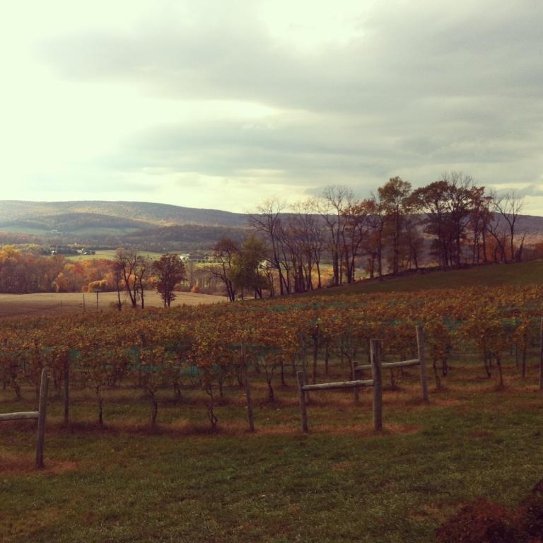 Virginia Wine Country