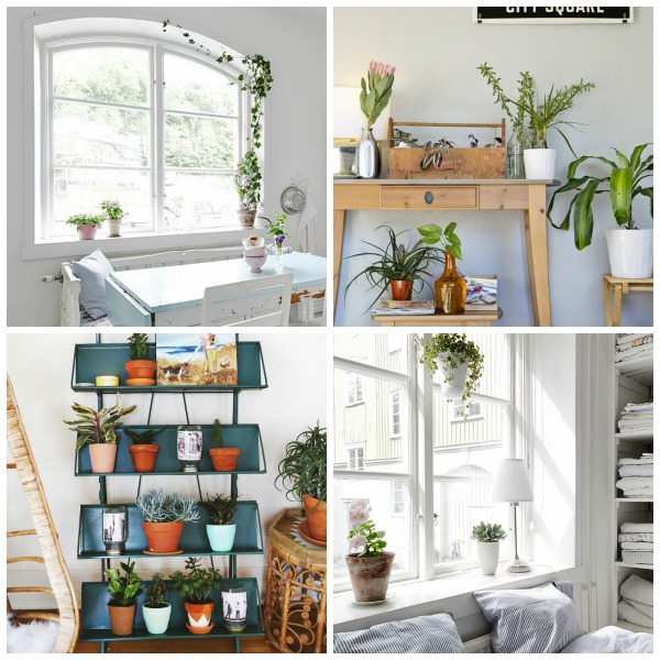 adding some green to your house